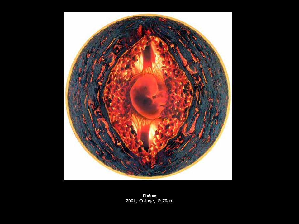 Phönix 2001, Collage, Ø 70cm