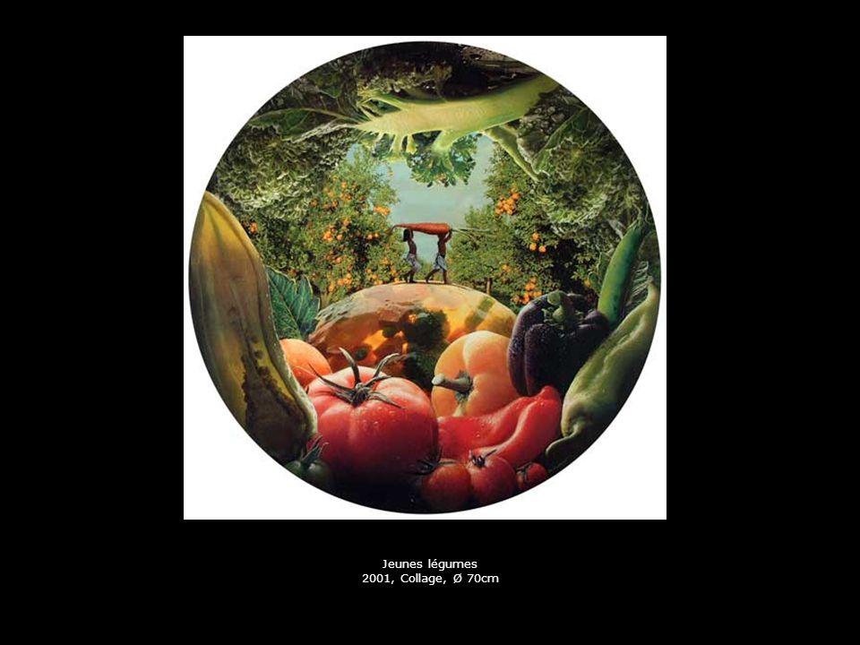 Jeunes légumes 2001, Collage, Ø 70cm