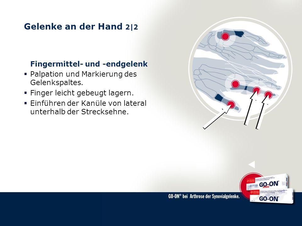Gelenke an der Hand 2|2 Fingermittel- und -endgelenk Palpation und Markierung des Gelenkspaltes. Finger leicht gebeugt lagern. Einführen der Kanüle vo
