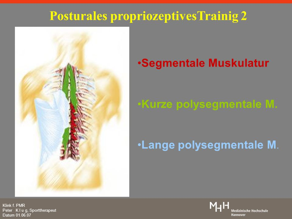 Klink f. PMR Peter K l u g, Sporttherapeut Datum 01.06.07 Posturales propriozeptivesTrainig 2 Segmentale Muskulatur Kurze polysegmentale M. Lange poly
