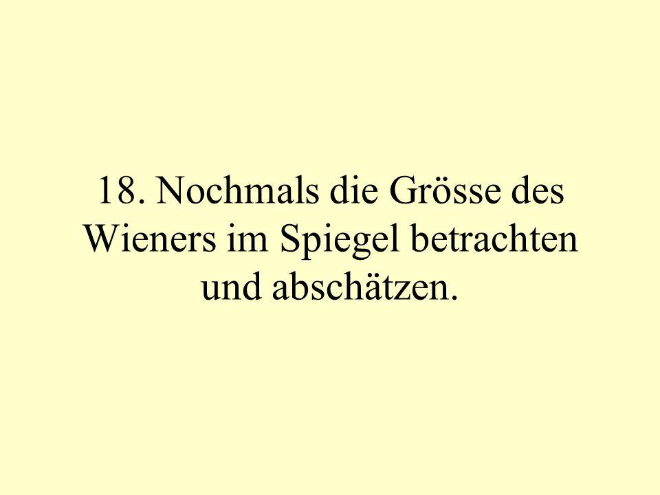 18. Nochmals die Grösse des Wieners im Spiegel betrachten und abschätzen.