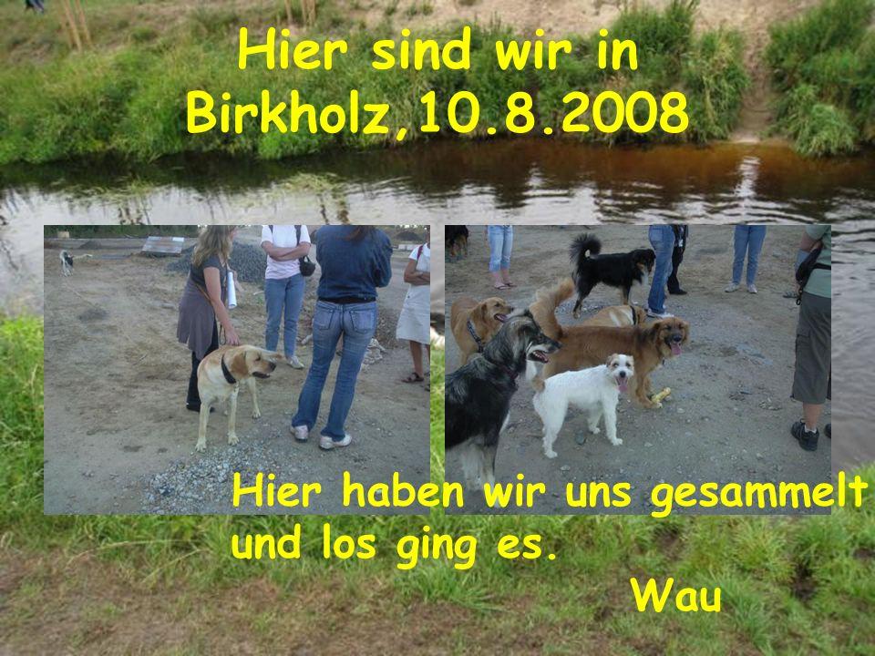 Hier sind wir in Birkholz,10.8.2008 Hier haben wir uns gesammelt und los ging es. Wau