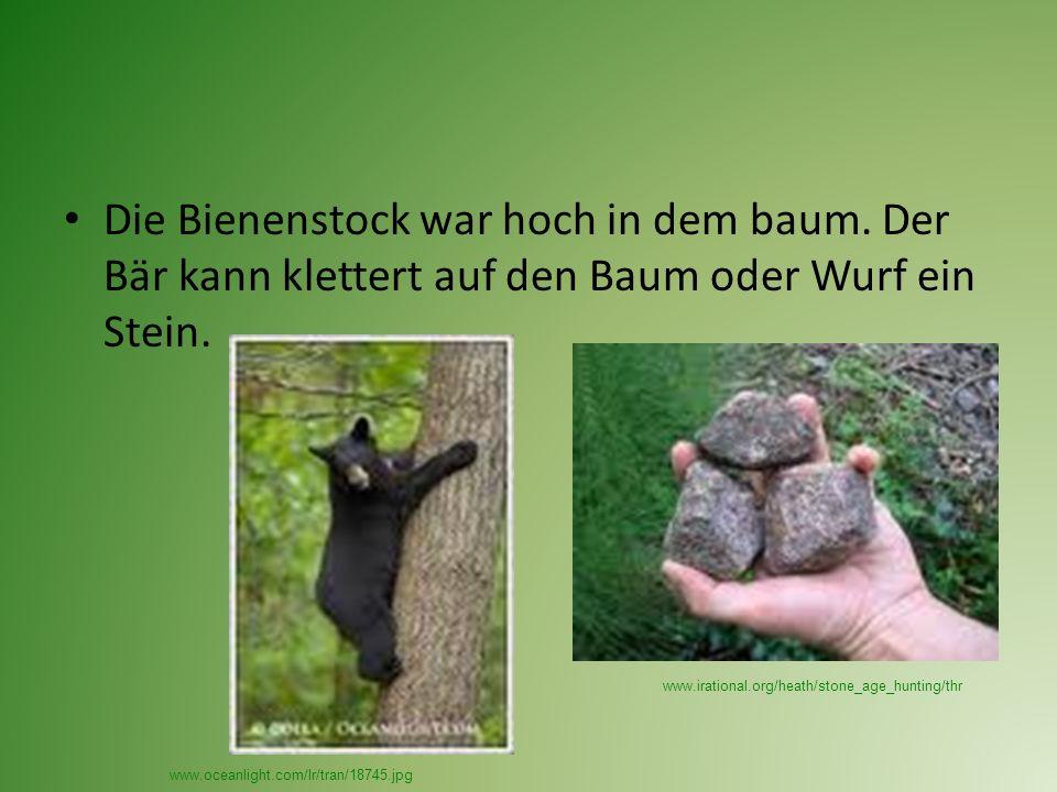Die Bienenstock war hoch in dem baum. Der Bär kann klettert auf den Baum oder Wurf ein Stein.