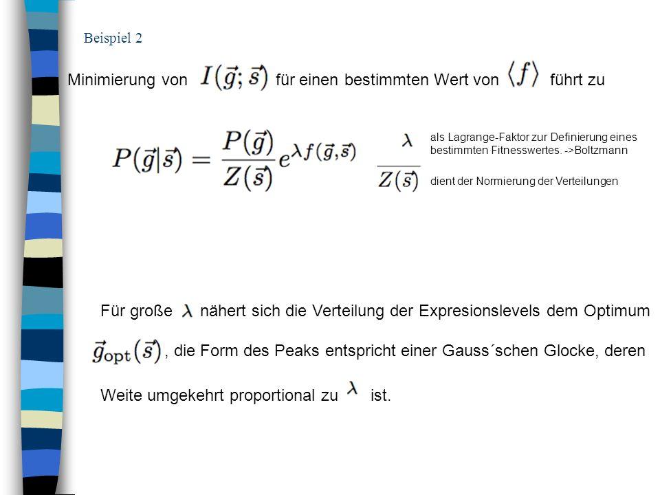 Beispiel 2 Minimierung von für einen bestimmten Wert von führt zu als Lagrange-Faktor zur Definierung eines bestimmten Fitnesswertes. ->Boltzmann dien