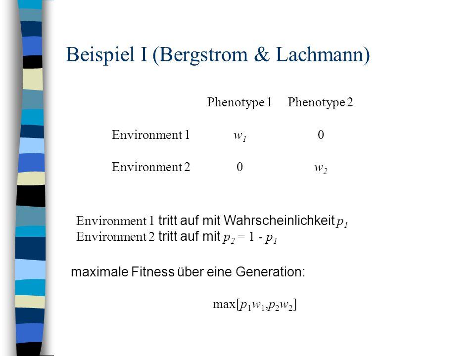 Beispiel I (Bergstrom & Lachmann) Phenotype 1Phenotype 2 Environment 1w1w1 0 Environment 20w2w2 Environment 1 tritt auf mit Wahrscheinlichkeit p 1 Env