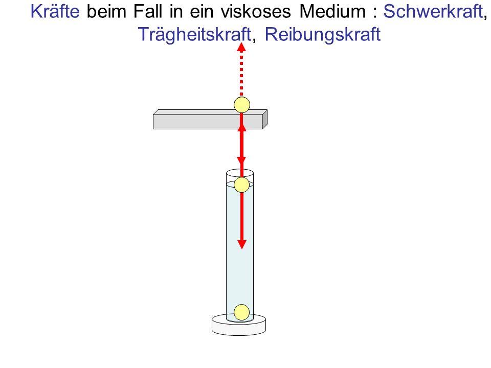 Kräfte beim Fall in ein viskoses Medium : Schwerkraft, Trägheitskraft, Reibungskraft