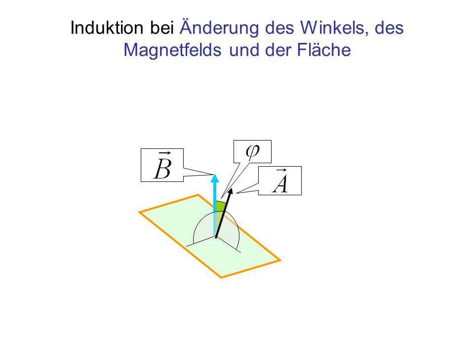 Induktion bei Änderung der Fläche, der Feldstärke oder des Winkels Induktionsgesetz Konstante Feldstärke, konstanter Winkel Konstante Fläche, konstanter Winkel Konstante Fläche, konstante Feldstärke Im Falle konstanter Winkelgeschwindigkeit