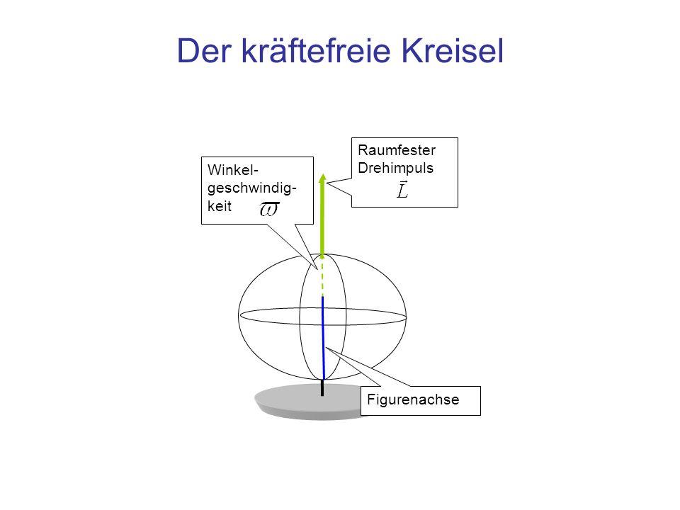 Eigenschaften des idealen, kräftefreien Kreisels Lagerung im Schwerpunkt Figurenachse ist Achse des größten Trägheitsmoments Drehachse ist gleich der Figurenachse