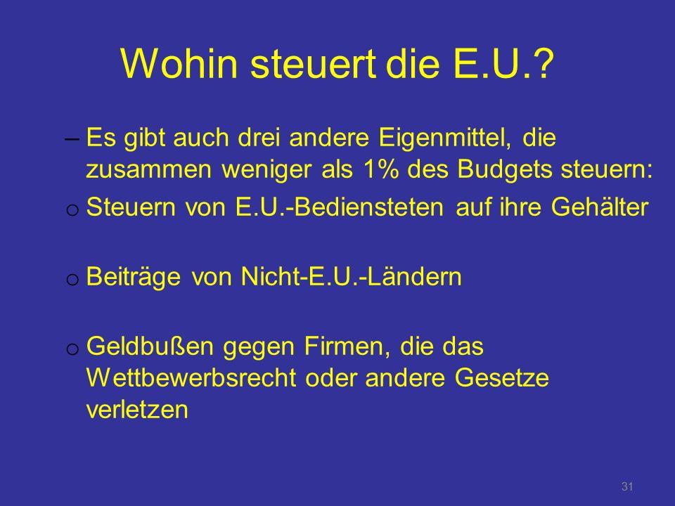 31 Wohin steuert die E.U..