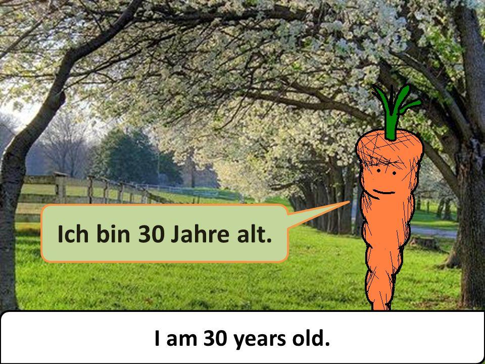 Ich bin 30 Jahre alt. I am 30 years old.