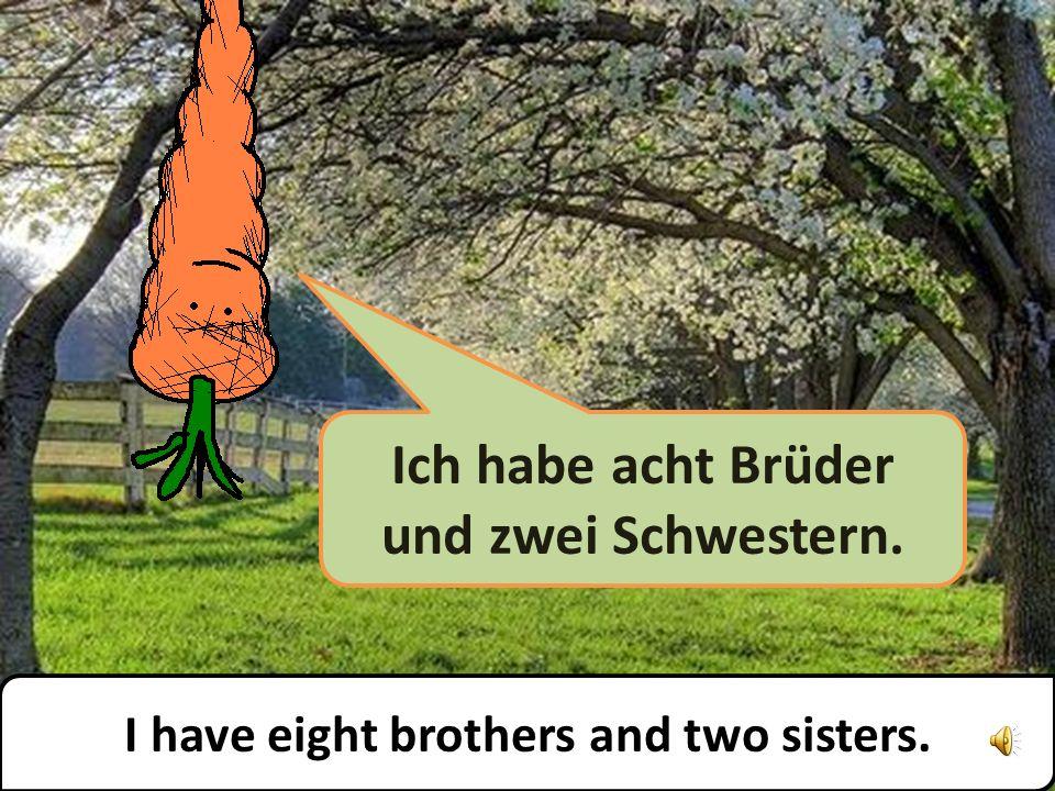 Ich habe acht Brüder und zwei Schwestern. I have eight brothers and two sisters.