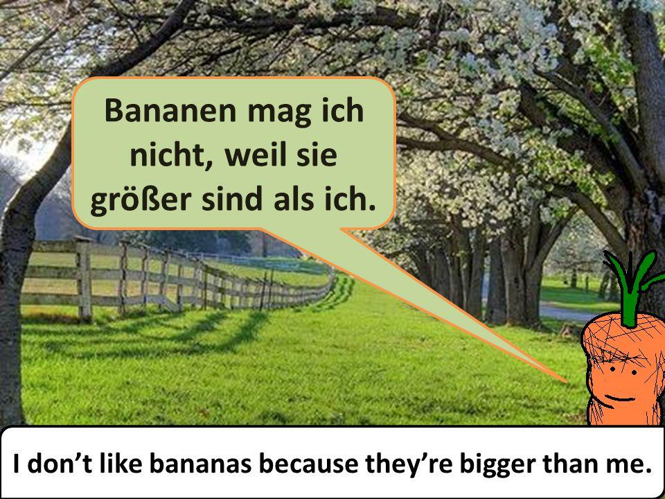 Bananen mag ich nicht, weil sie größer sind als ich.