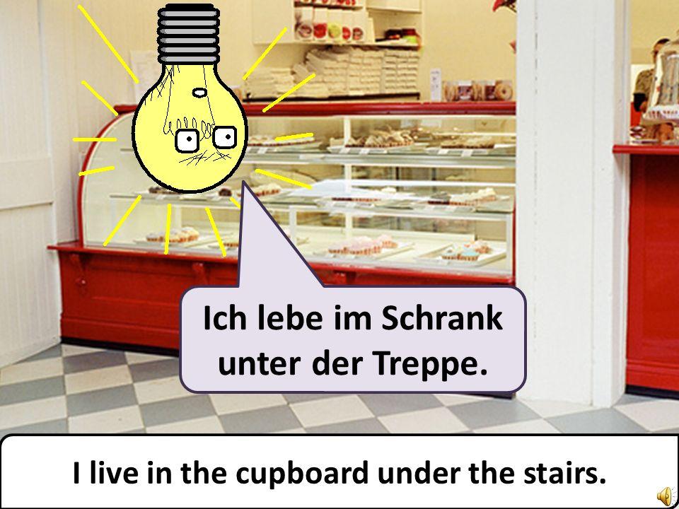Ich lebe im Schrank unter der Treppe. I live in the cupboard under the stairs.