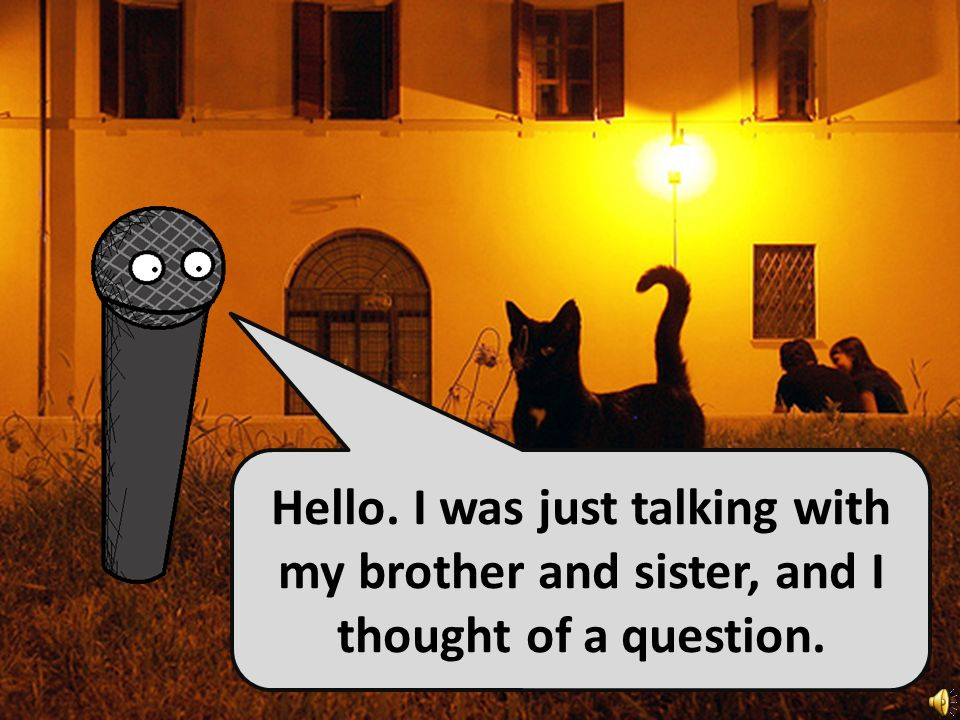 Hello. I was just talking with my brother and sister, and I thought of a question.