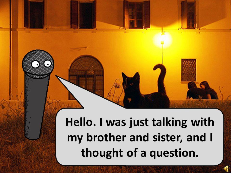Ich habe drei Brüder und zwei Schwestern. I have three brothers and two sisters.