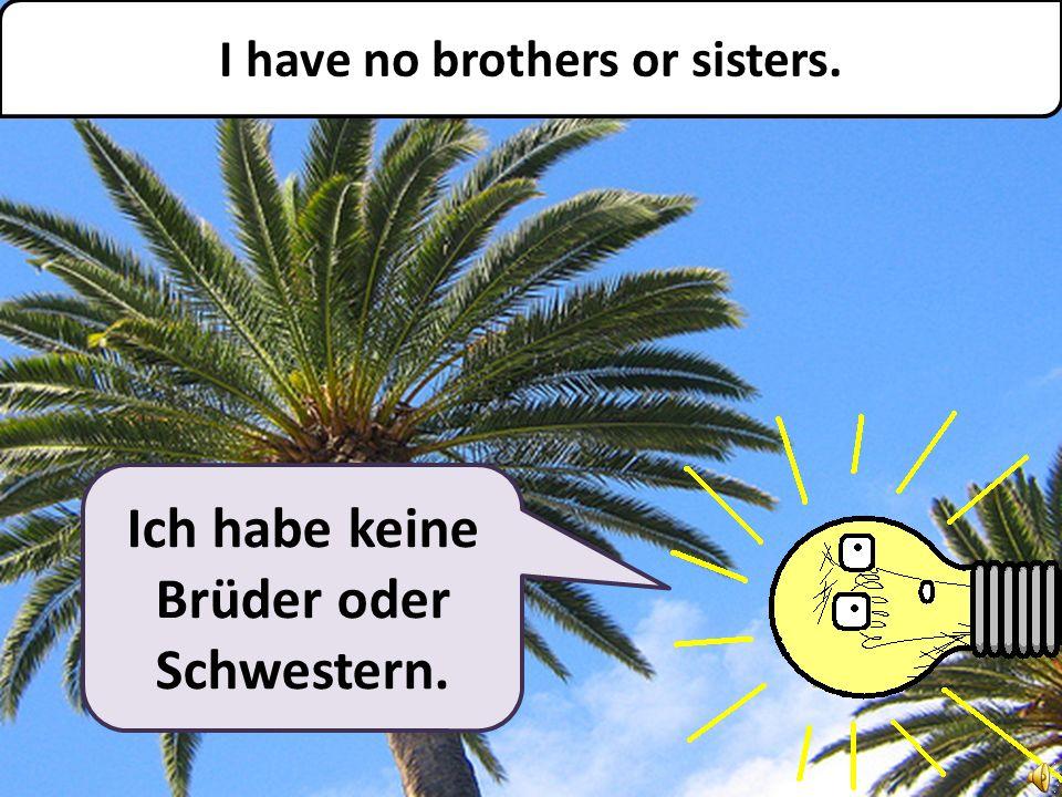 Ich habe keine Brüder oder Schwestern. I have no brothers or sisters.