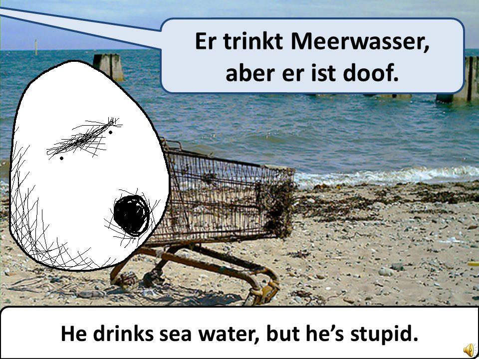 He drinks sea water, but hes stupid. Er trinkt Meerwasser, aber er ist doof.