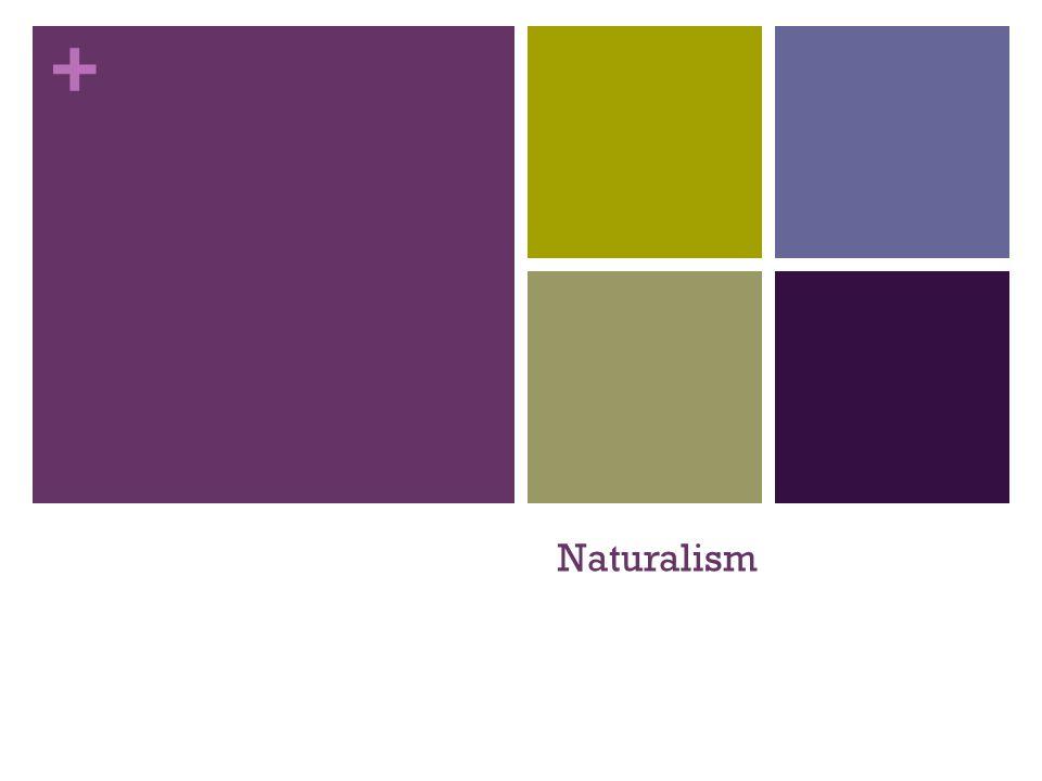 + Naturalism
