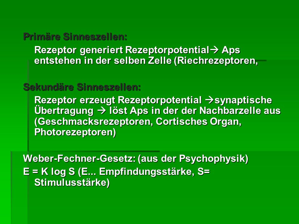 Rezeptortypen Mechanorezeptoren: Tast-, Gehör-, Schweresinn Mechanorezeptoren: Tast-, Gehör-, Schweresinn Photorezeptoren: optischer Sinn Photorezeptoren: optischer Sinn Chemorezeptoren: Geruchs- u.