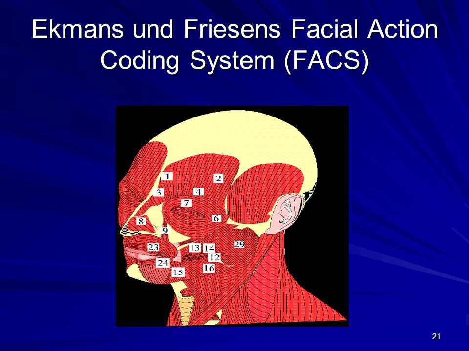 21 Ekmans und Friesens Facial Action Coding System (FACS)