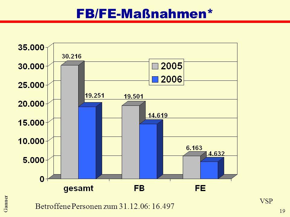 19 Ganner FB/FE-Maßnahmen* Betroffene Personen zum 31.12.06: 16.497 VSP