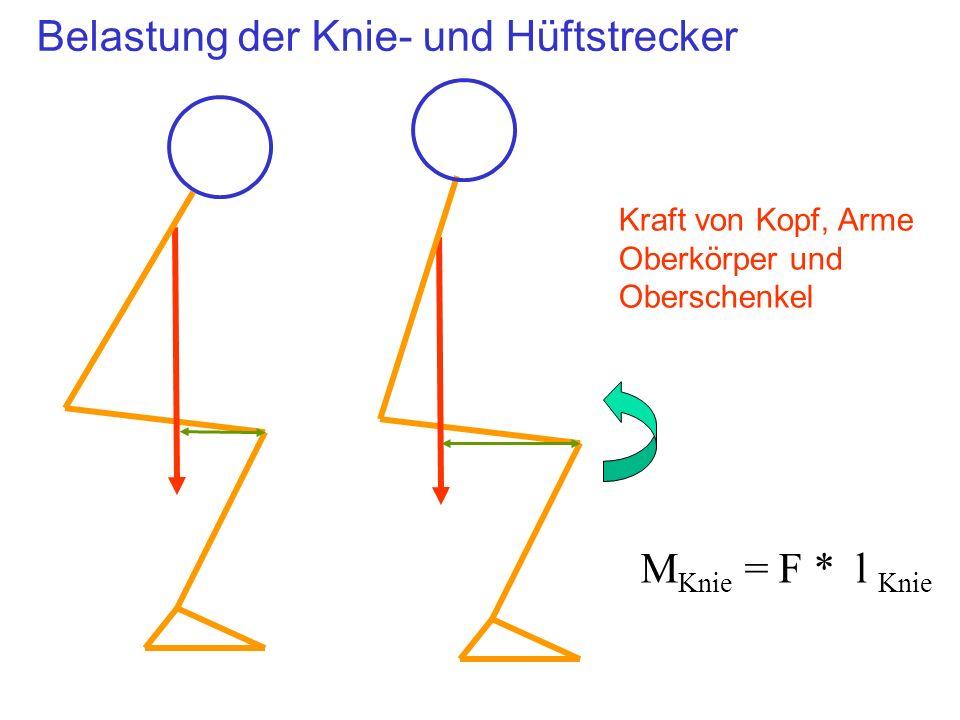 Belastung der Knie- und Hüftstrecker Kraft von Kopf, Arme Oberkörper und Oberschenkel M Knie = F * l Knie