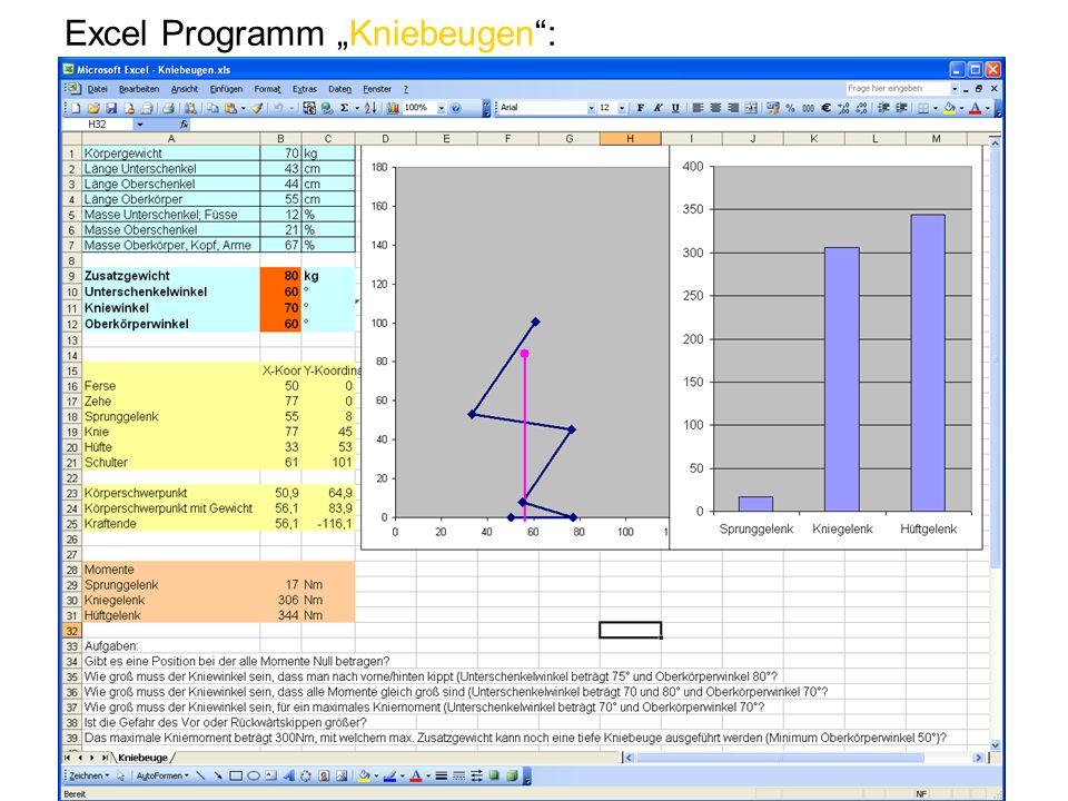 Excel Programm Kniebeugen: