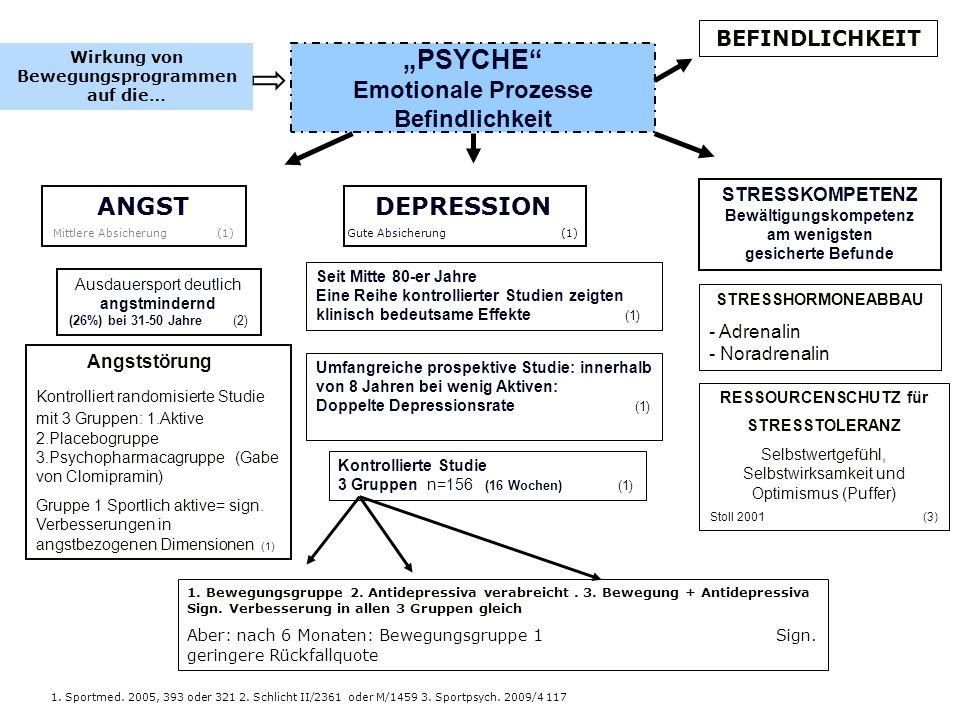 PSYCHE Emotionale Prozesse Befindlichkeit Ausdauersport deutlich angstmindernd (26%) bei 31-50 Jahre (2) DEPRESSION Gute Absicherung (1) ANGST Mittler