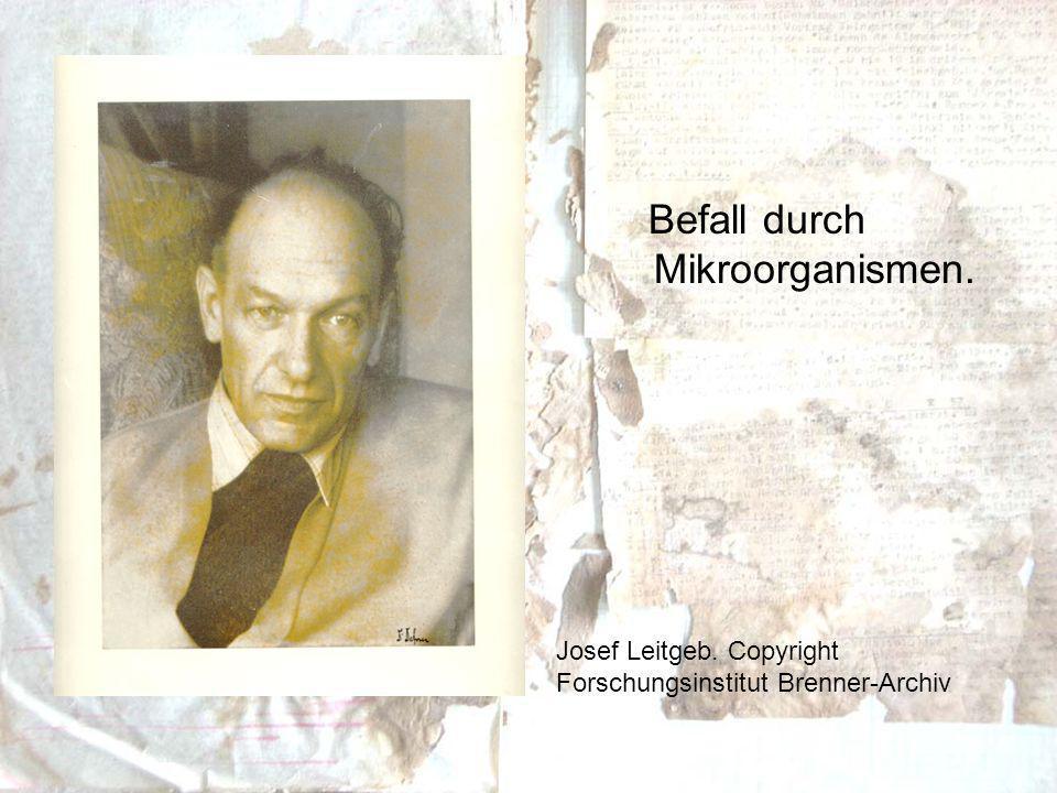 Befall durch Mikroorganismen. Josef Leitgeb. Copyright Forschungsinstitut Brenner-Archiv