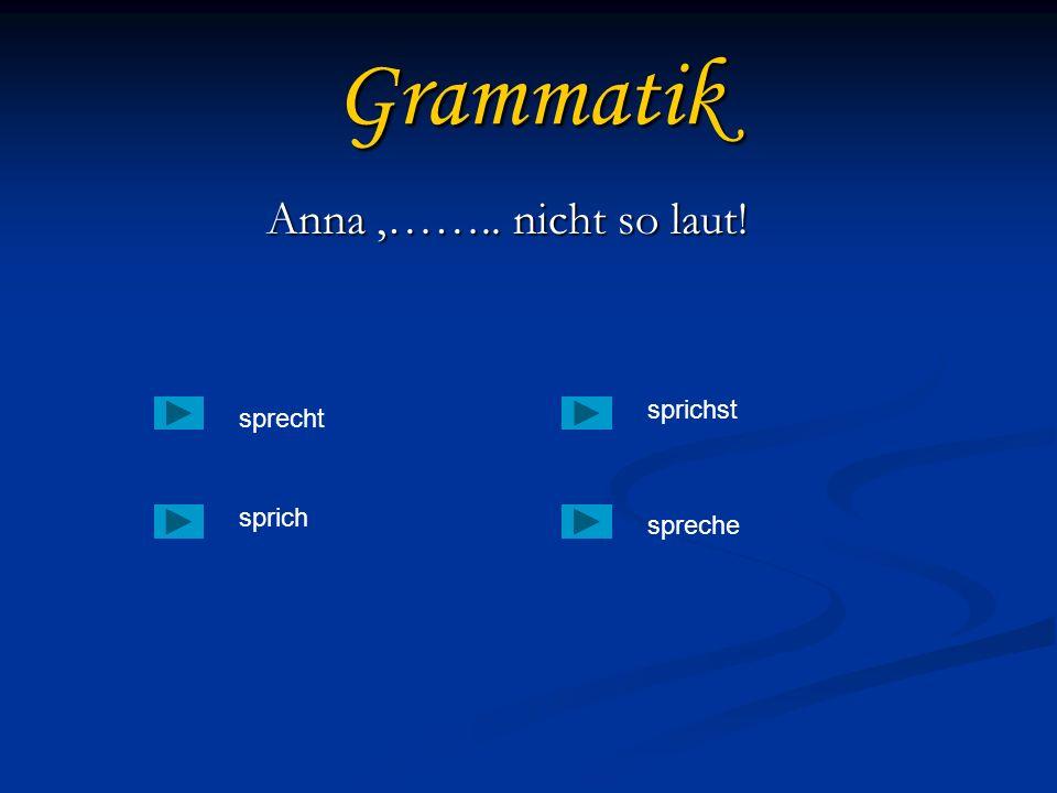 Grammatik Anna,…….. nicht so laut! sprecht sprich spreche sprichst