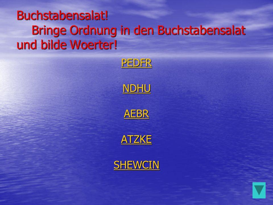 Buchstabensalat! Bringe Ordnung in den Buchstabensalat und bilde Woerter! PEDFR NDHU AEBR ATZKE SHEWCIN