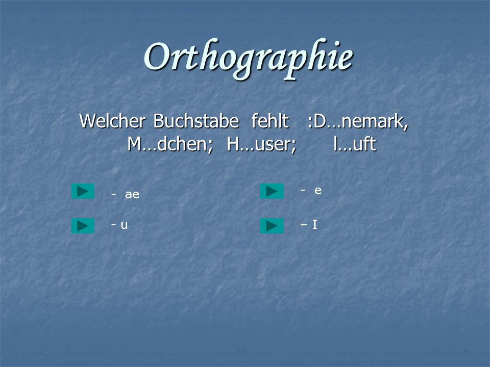 Orthographie Welcher Buchstabe fehlt :D…nemark, M…dchen; H…user; l…uft Welcher Buchstabe fehlt :D…nemark, M…dchen; H…user; l…uft - ae - u– I - e