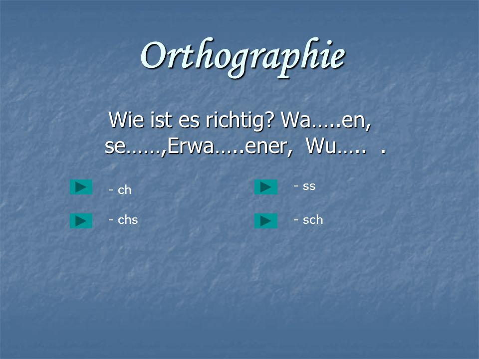 Orthographie Wie ist es richtig? Wa…..en, se……,Erwa…..ener, Wu…... Wie ist es richtig? Wa…..en, se……,Erwa…..ener, Wu…... - ch - chs- sch - ss