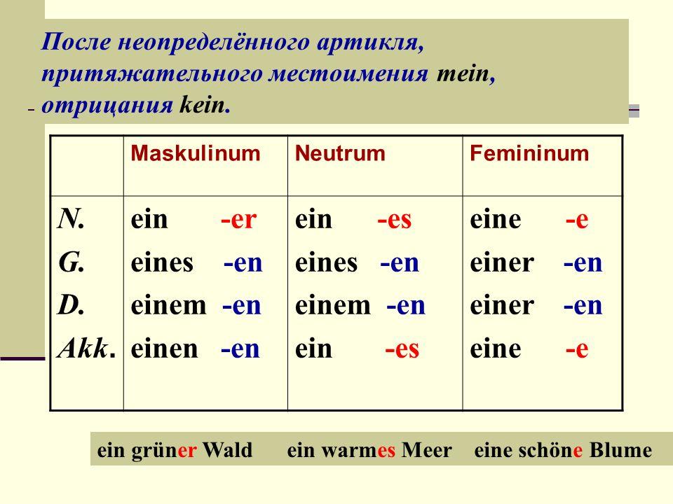 После неопределённого артикля, притяжательного местоимения mein, отрицания kein.