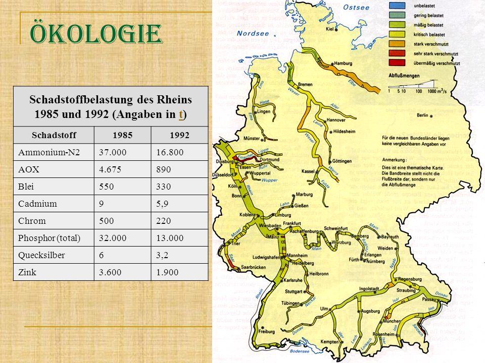 öKOLOGIE Schadstoffbelastung des Rheins 1985 und 1992 (Angaben in t)t Schadstoff19851992 Ammonium-N2 37.00016.800 AOX 4.675890 Blei 550330 Cadmium 95,
