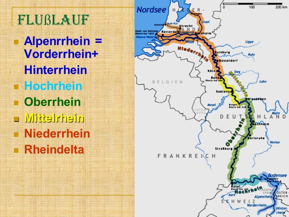 Flu ß lauf Alpenrrhein = Vorderrhein+ Hinterrhein Hochrhein Oberrhein Mittelrhein Mittelrhein Niederrhein Rheindelta