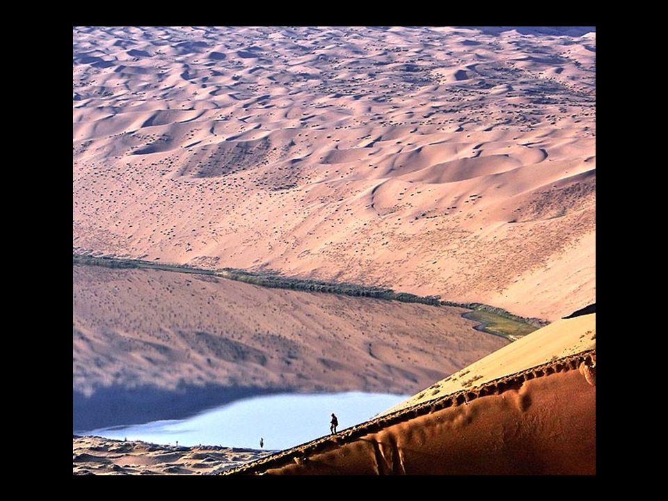Einige dieser Seen sind jung, ältere enthalten einen höheren Salzgehalt. Die Sichtweite ist sehr beeindruckend, weil die Dünen eine Höhe von 500 m err