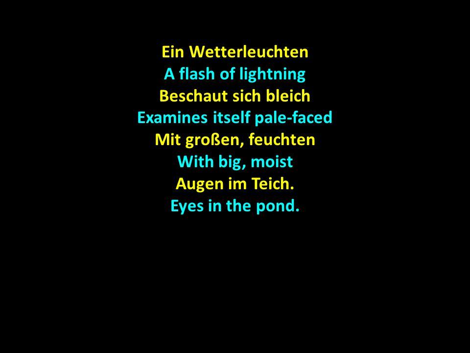 Ein Wetterleuchten A flash of lightning Beschaut sich bleich Examines itself pale-faced Mit großen, feuchten With big, moist Augen im Teich.