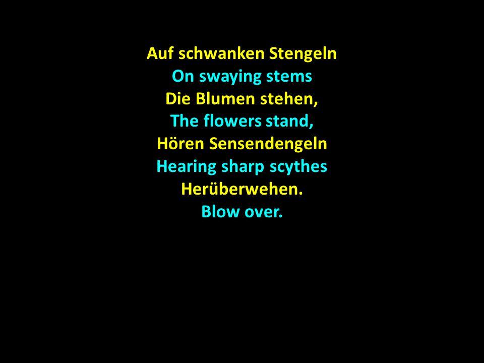 Auf schwanken Stengeln On swaying stems Die Blumen stehen, The flowers stand, Hören Sensendengeln Hearing sharp scythes Herüberwehen.