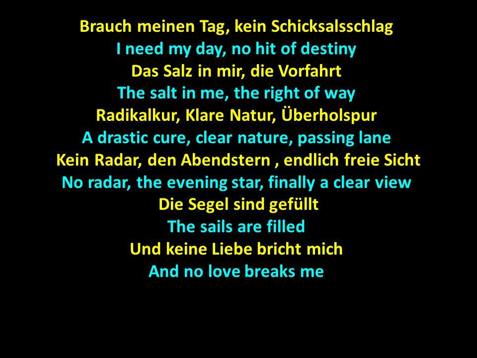 Brauch meinen Tag, kein Schicksalsschlag I need my day, no hit of destiny Das Salz in mir, die Vorfahrt The salt in me, the right of way Radikalkur, K