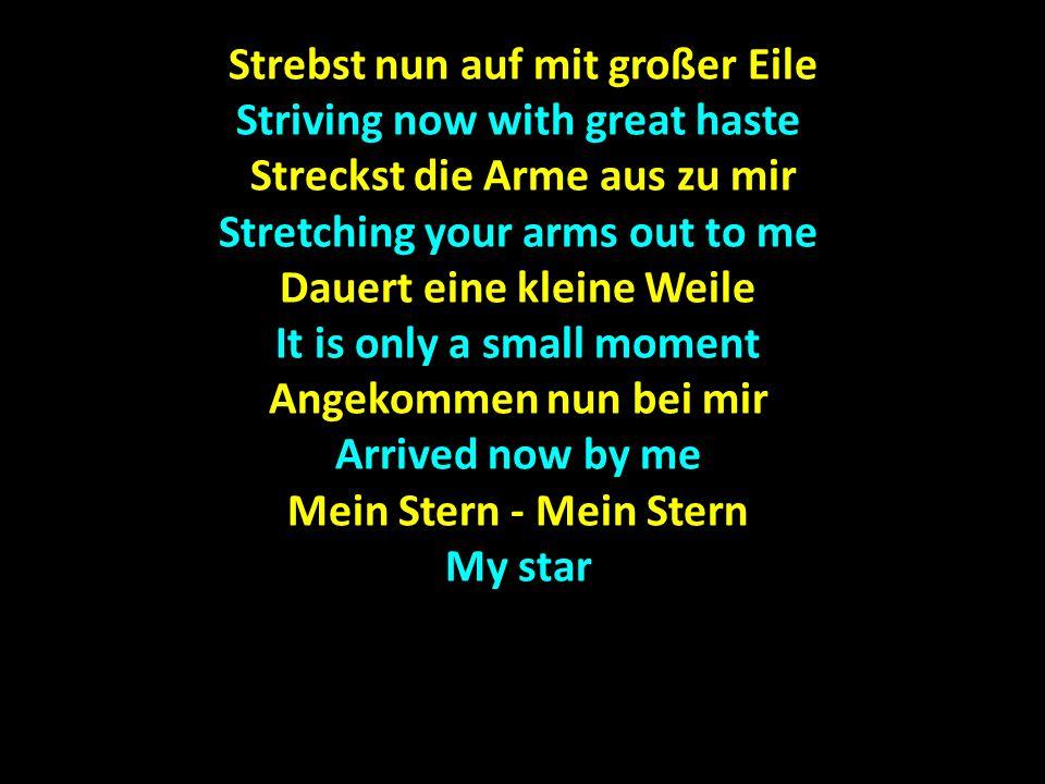Strebst nun auf mit großer Eile Strebst nun auf mit großer Eile Striving now with great haste Streckst die Arme aus zu mir Streckst die Arme aus zu mir Stretching your arms out to me Dauert eine kleine Weile It is only a small moment Angekommen nun bei mir Arrived now by me Mein Stern - Mein Stern My star