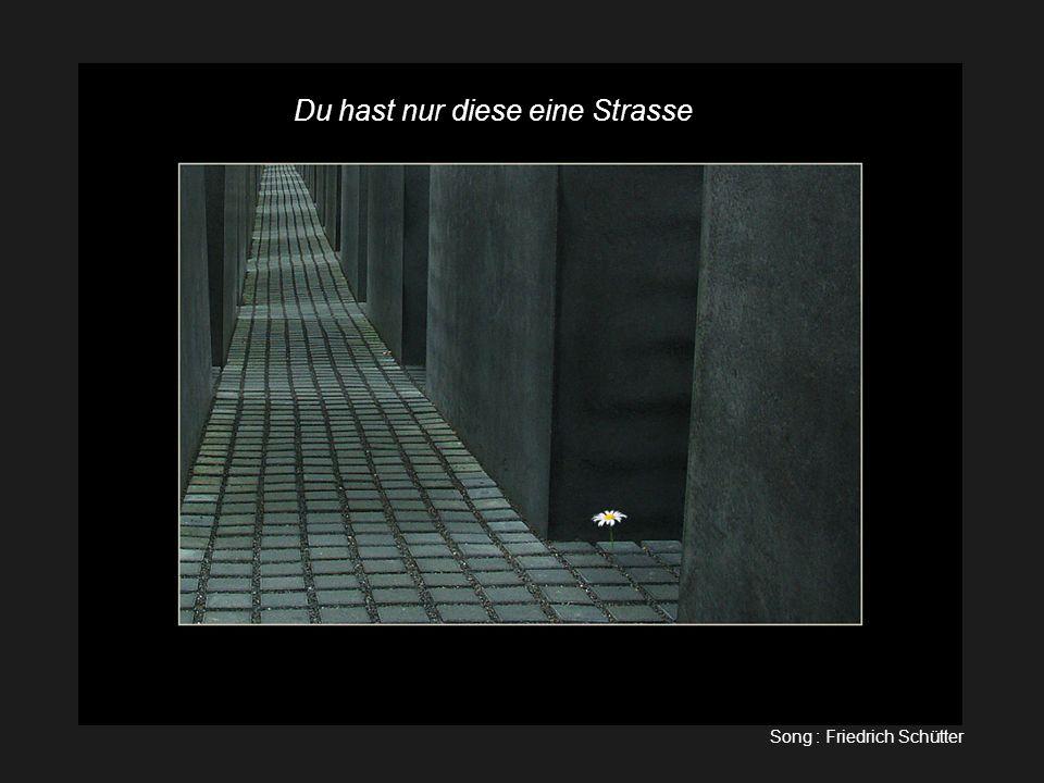 du hast nur diese eine Strasse. Du hast nur diese eine Strasse! Lockenelke1@aol.com