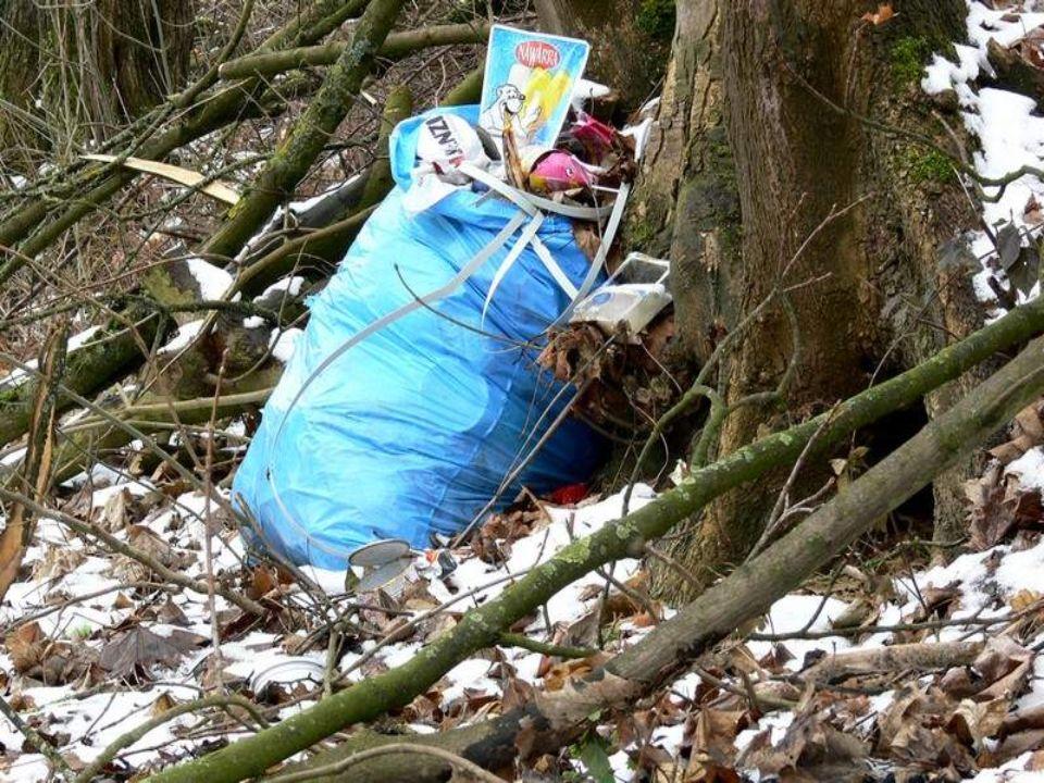 Stellt euch vor, ein kleines Reh tut sich im Wald empfindlich weh. Das kleine Reh