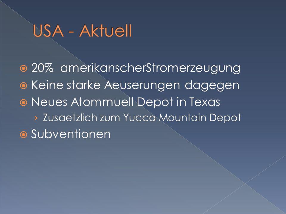 20% amerikanscherStromerzeugung Keine starke Aeuserungen dagegen Neues Atommuell Depot in Texas Zusaetzlich zum Yucca Mountain Depot Subventionen