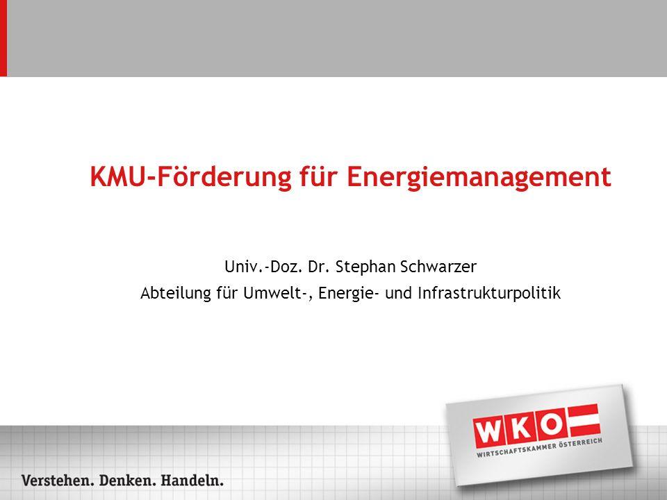 KMU-Förderung für Energiemanagement Univ.-Doz. Dr.