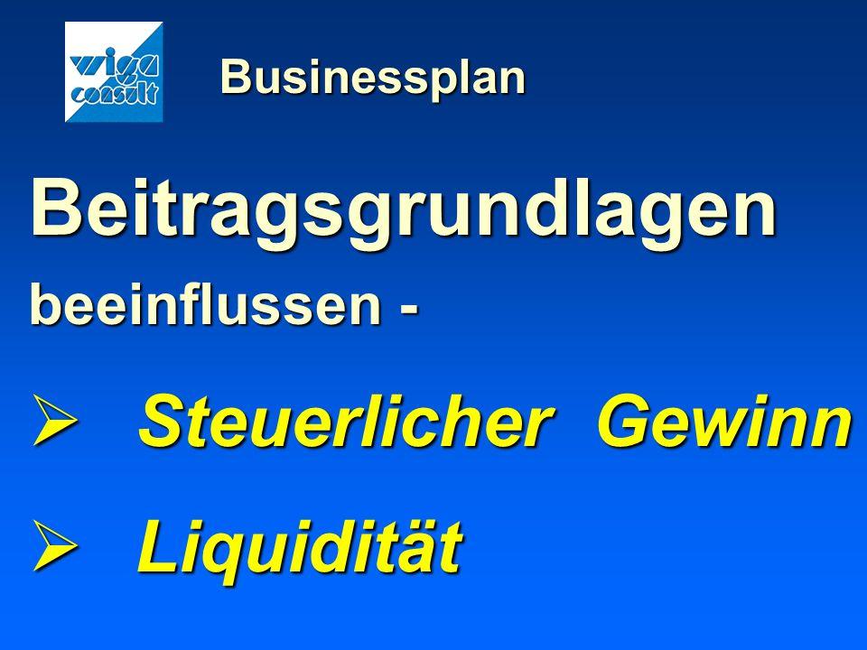 Businessplan Beitragsgrundlagen beeinflussen - Steuerlicher Gewinn Steuerlicher Gewinn Liquidität Liquidität