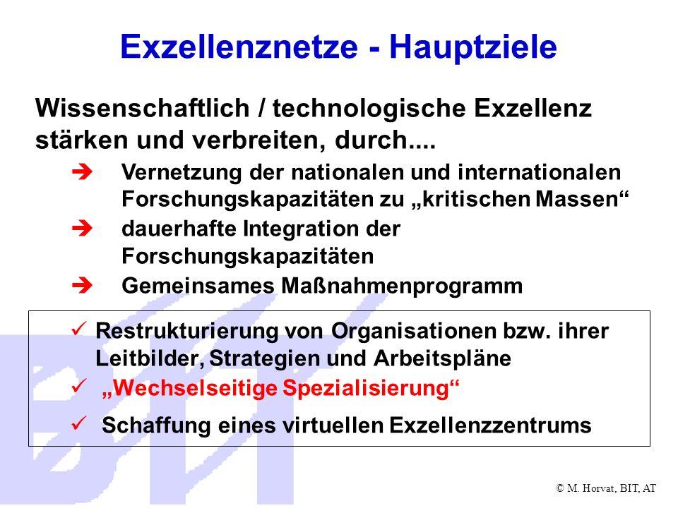 © M. Horvat, BIT, AT Exzellenznetze - Hauptziele Restrukturierung von Organisationen bzw. ihrer Leitbilder, Strategien und Arbeitspläne Wechselseitige