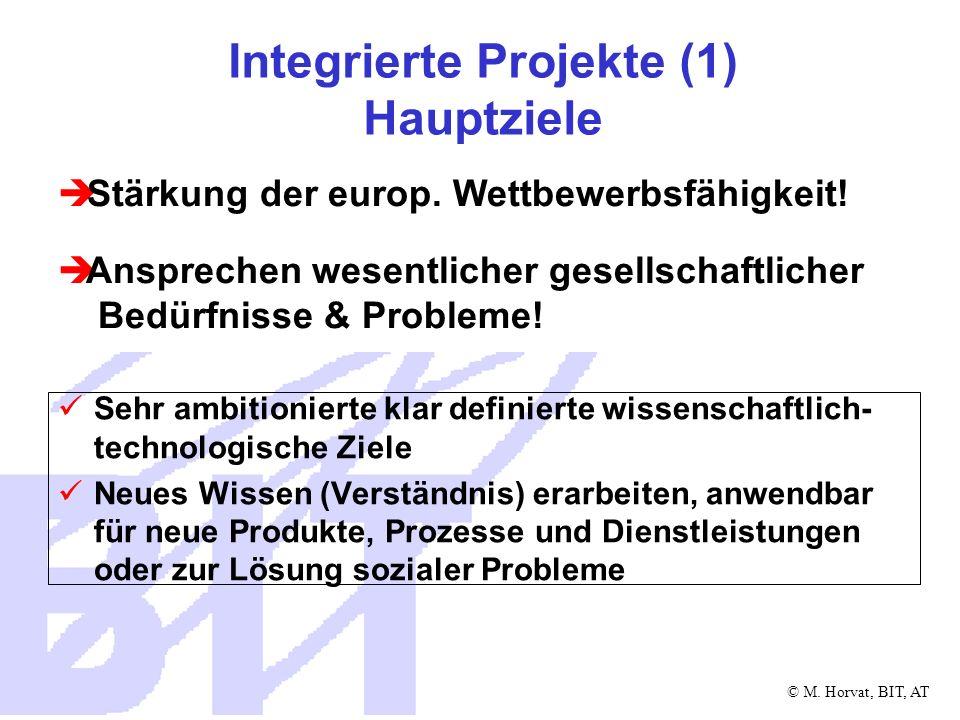 © M. Horvat, BIT, AT Integrierte Projekte (1) Hauptziele Sehr ambitionierte klar definierte wissenschaftlich- technologische Ziele Neues Wissen (Verst