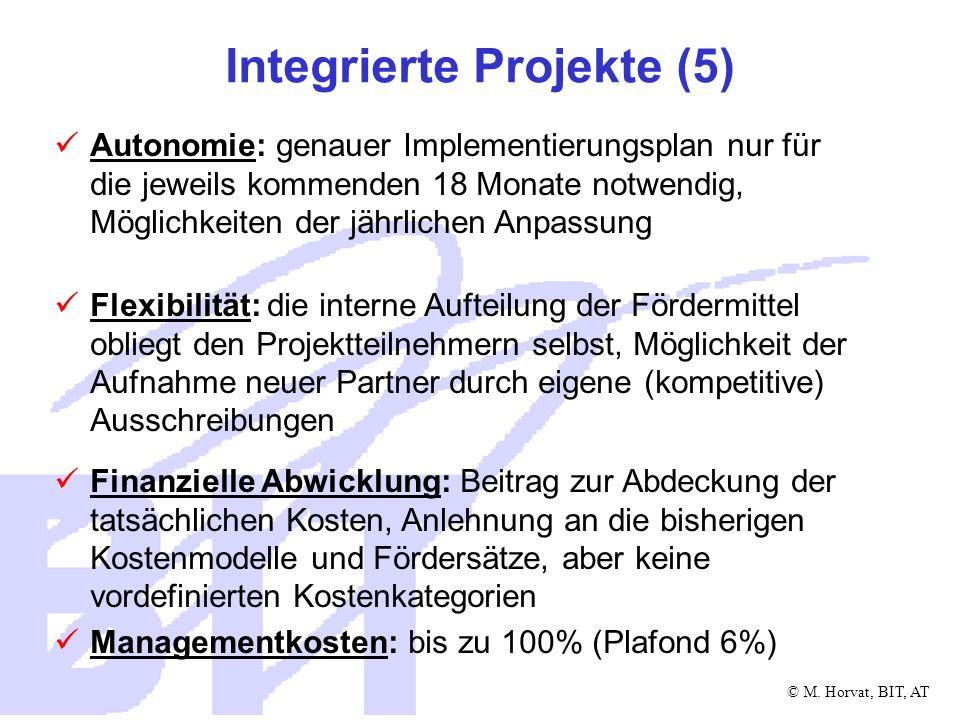 © M. Horvat, BIT, AT Integrierte Projekte (5) Autonomie: genauer Implementierungsplan nur für die jeweils kommenden 18 Monate notwendig, Möglichkeiten