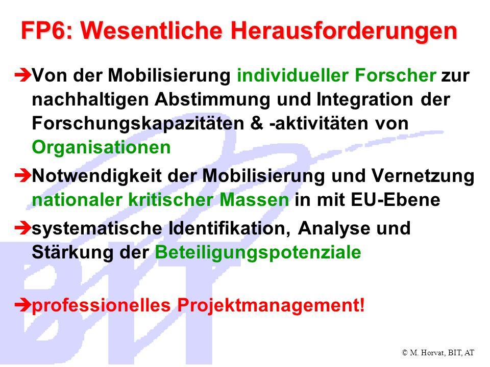 © M. Horvat, BIT, AT FP6: Wesentliche Herausforderungen Von der Mobilisierung individueller Forscher zur nachhaltigen Abstimmung und Integration der F